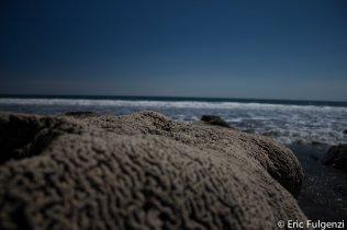 Playa_Montezuma_4_13